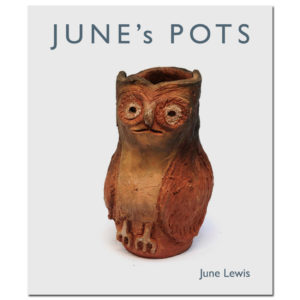 June Lewis Pots Book
