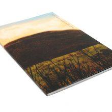 Jamie Reid Eight Fold Year paperback