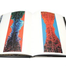 Jamie Reid XXXXX Book page spreads 8